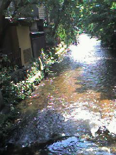 まったりと 京都白川散策